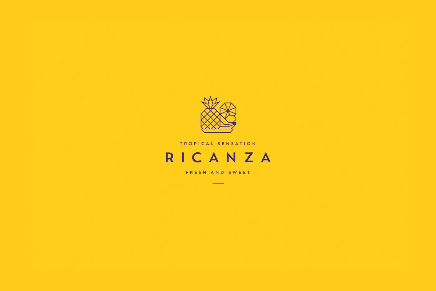 Ricanza品牌VI設計欣賞-深圳VI設計4