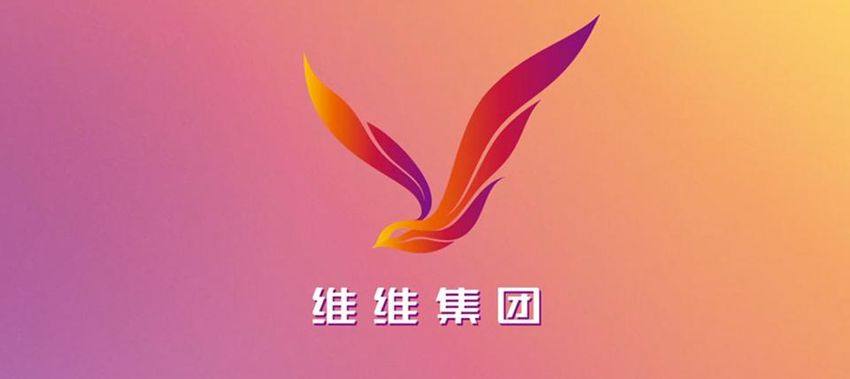 维维豆奶公司:维维集团-启用全新的集团标志-深圳VI设计004