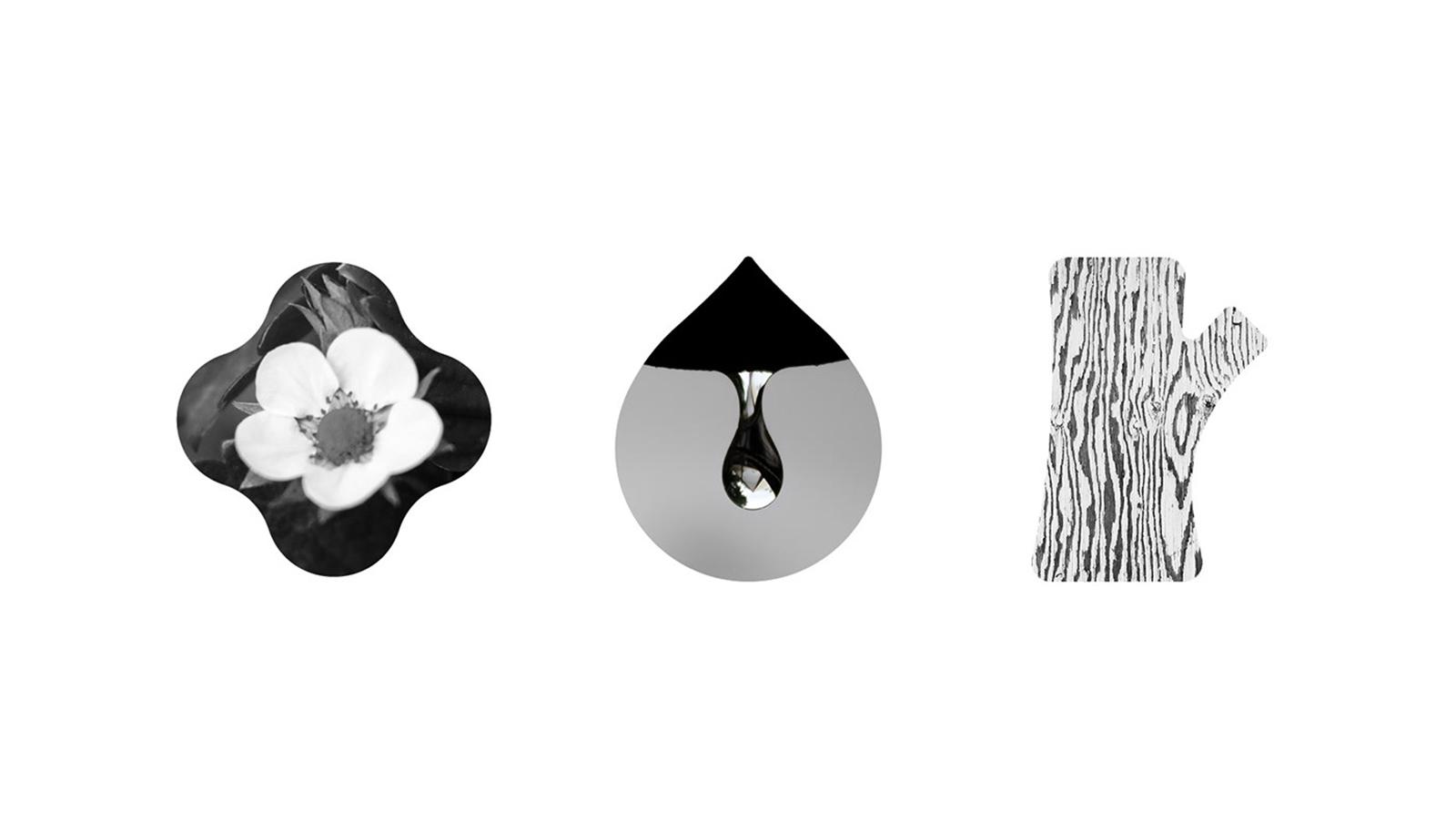 花水木居家清洁用品品牌形象设计欣赏-深圳VI设计
