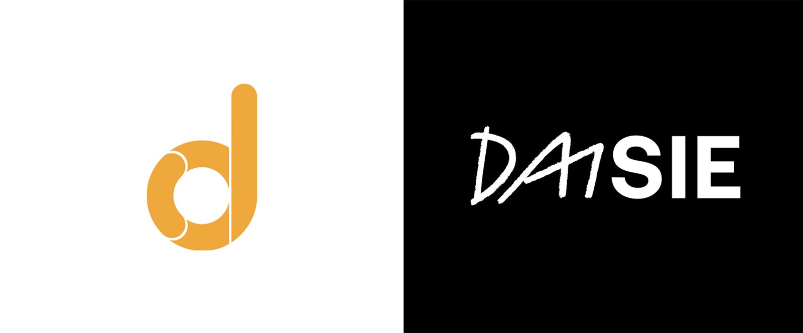 Daisie企业启动全新的品牌VI形象设计-01