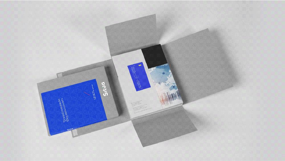 品牌VI設計公司 - SITúA咨詢公司品牌視覺VI形象設計-知名VI設計公司