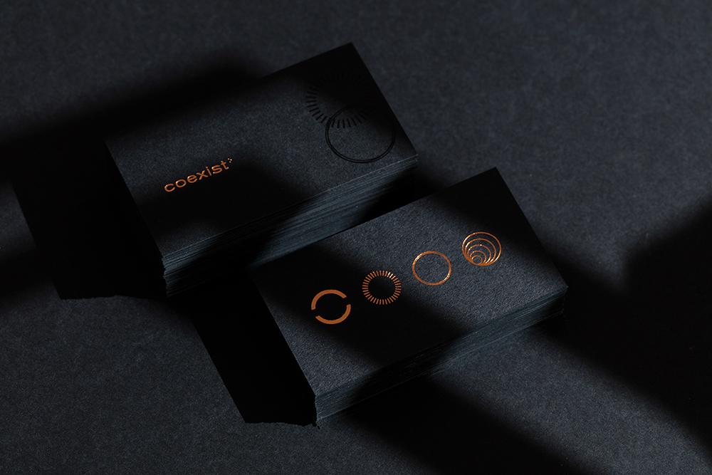 品牌VI设计咨询公司-Coexist® Records创意咨询公司-深圳VI设计