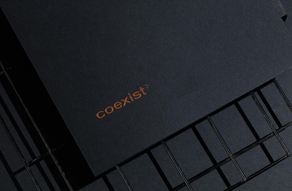品牌VI设计咨询公司-Coexist® Records创意咨询公司-简约logo设计