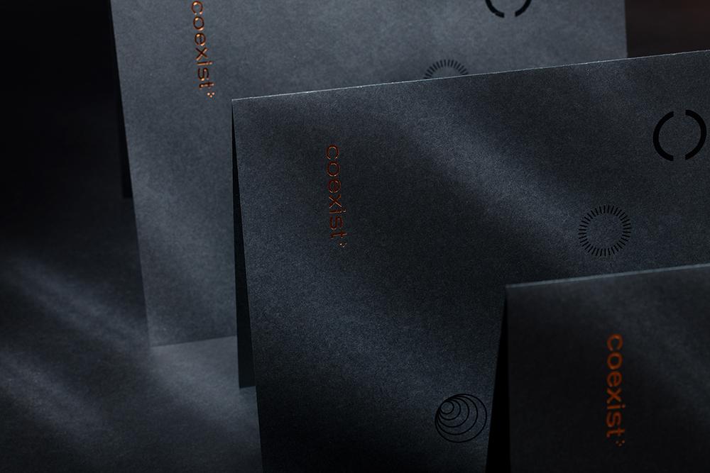 品牌VI设计咨询公司-Coexist® Records创意咨询公司-简约大气VI设计